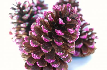 Beautiful Pine cone Mobiles For Kids To Make.